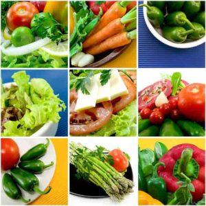 Növényi fehérje források